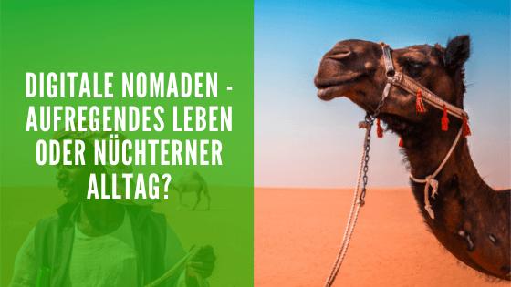 Digitale Nomaden - Foto eines Kamels.